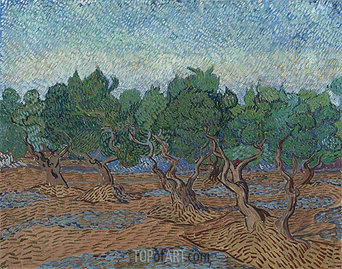 Olive Grove, 1889 | Vincent van Gogh| Painting Reproduction