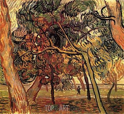 Vincent van Gogh | Study of Pine Trees, 1889