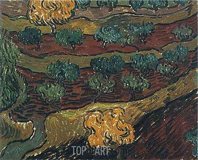 Olive Trees against a Slope of a Hill, 1889 | Vincent van Gogh | Gemälde Reproduktion