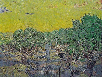 Olive Grove with Picking Figures, 1889 | Vincent van Gogh | Painting Reproduction
