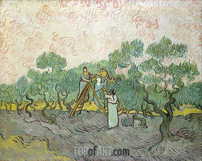 Olive Picking, 1889 | Vincent van Gogh| Painting Reproduction