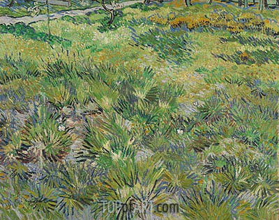 Meadow in the Garden of Saint-Paul Hospital, 1890 | Vincent van Gogh | Painting Reproduction