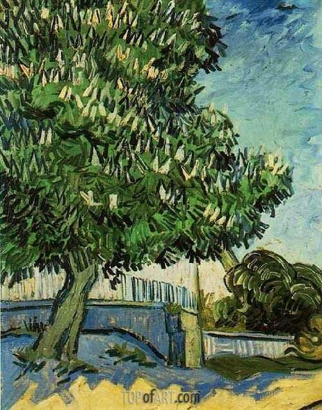 Chestnut Tree in Blossom, May 1890 | Vincent van Gogh | Gemälde Reproduktion