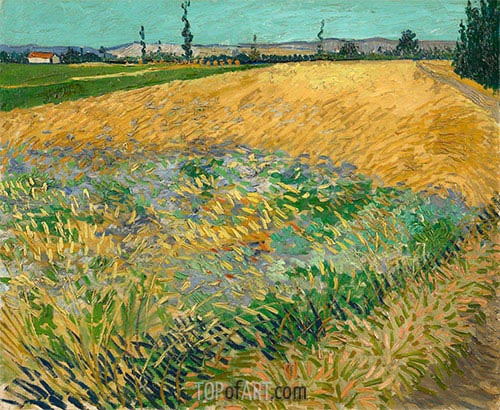 Wheat Field with the Alpilles Foothills, 1888 | Vincent van Gogh | Painting Reproduction