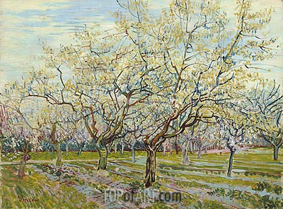The White Orchard, 1888 | Vincent van Gogh| Painting Reproduction