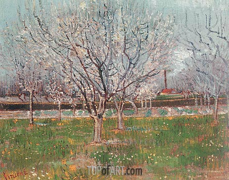 Orchard in Blossom (Plum Trees), April 1888 | Vincent van Gogh | Gemälde Reproduktion