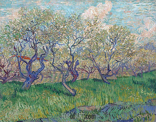 Orchard in Bloom, 1888 | Vincent van Gogh| Painting Reproduction