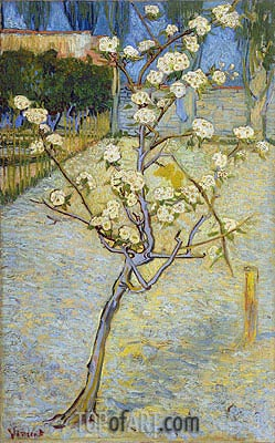 Blossoming Pear Tree, 1888 | Vincent van Gogh | Painting Reproduction