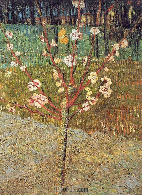 Flowering Almond Tree, 1888 | Vincent van Gogh | Painting Reproduction