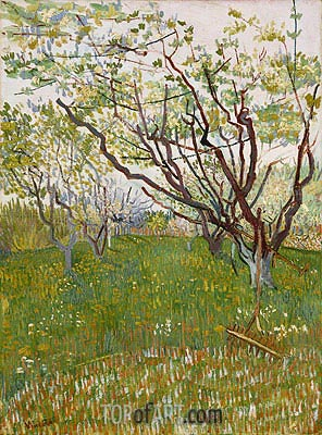 Orchard in Blossom, 1888 | Vincent van Gogh| Painting Reproduction