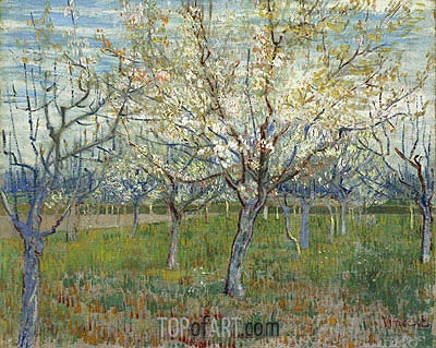 Orchard with Blossoming Apricot Trees, 1888 | Vincent van Gogh | Painting Reproduction