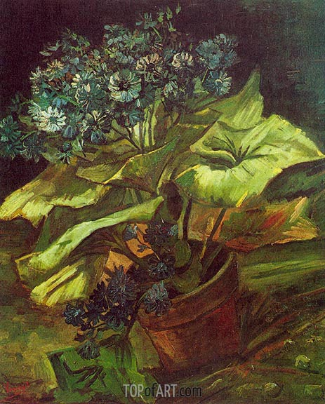 Cineraria in a Flowerpot, July-Augus | Vincent van Gogh | Painting Reproduction