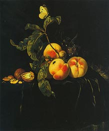 Still Life of Fruit, c1667/74 by Willem van Aelst | Painting Reproduction