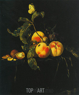 Still Life of Fruit, c1667/74 | Willem van Aelst| Painting Reproduction