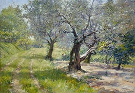 The Olive Grove, c.1910 von William Merritt Chase | Gemälde-Reproduktion