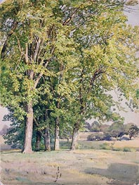 Maples in Chester County, Pennsylvania | William Trost Richards | Painting Reproduction