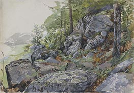 Woodland Boulders | William Trost Richards | veraltet