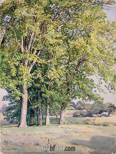 Maples in Chester County, Pennsylvania, 1889 | William Trost Richards | Painting Reproduction