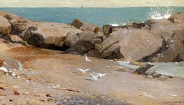 Rocky Coast and Gulls, 1869 by Winslow Homer | Painting Reproduction