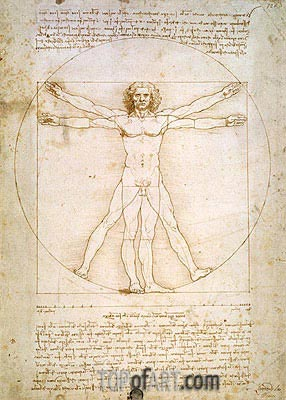 Vitruvian Man (The Proportions of the Human Figure), c.1492 | Leonardo da Vinci| Painting Reproduction
